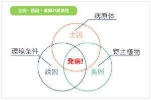 主因誘因素因の関係図
