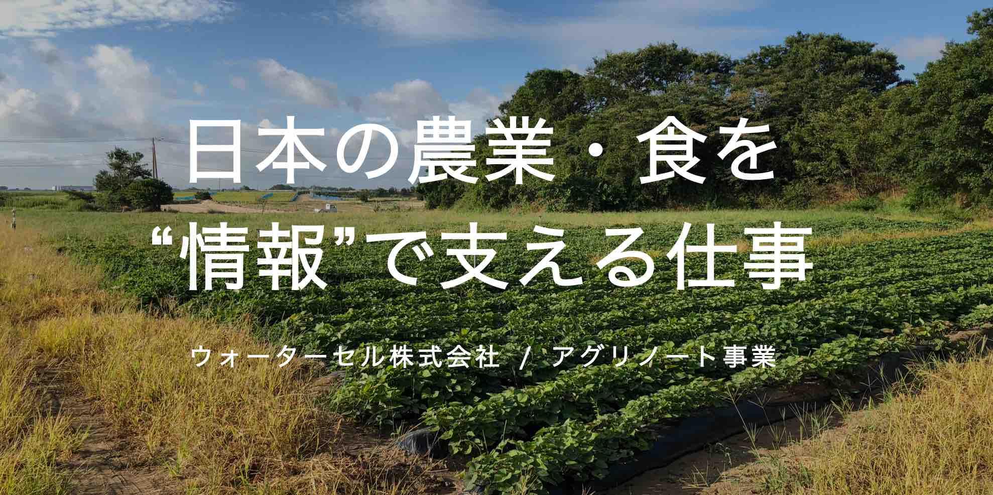 日本の農業・食を「情報」で支える仕事。
