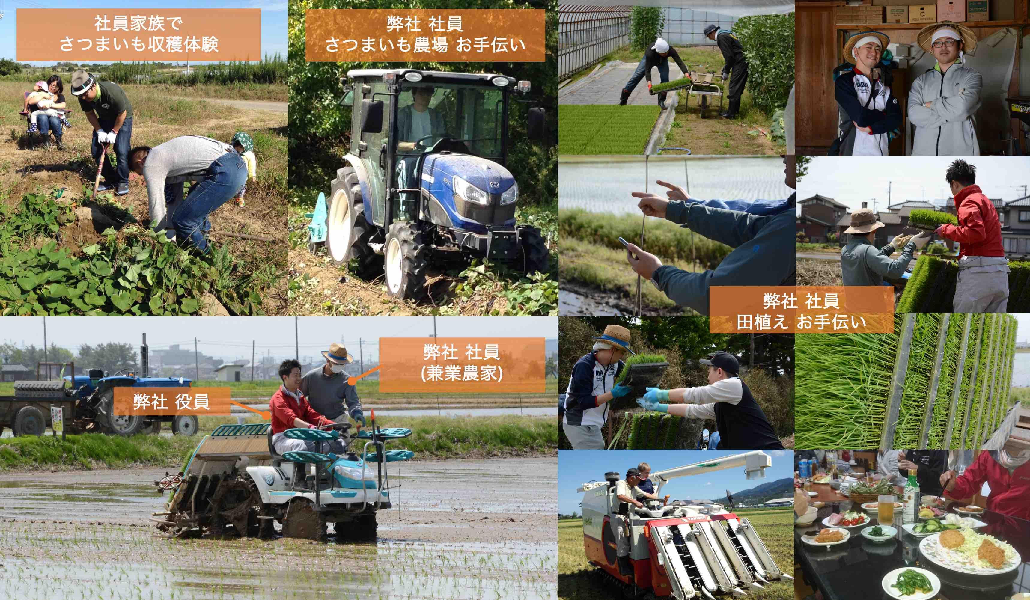 会社の雰囲気・農業研修・農業体験